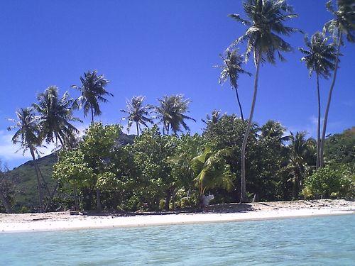 Desert island 2